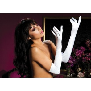Satin opera length gloves Plybg STM-40109-OS-Wh